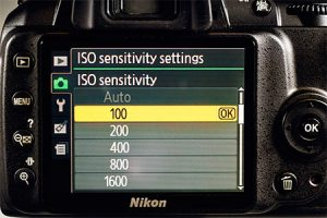 ISO in a Camera